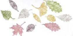 Insynsskydd Gecko Leaves